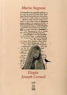 Papel Elegia Jospeh Cornell