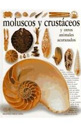 Papel MOLUSCOS Y CRUSTACEOS (VISUAL ALTEA) (CARTONE)