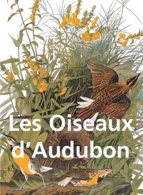 E-book Les Oiseaux D'Audubon