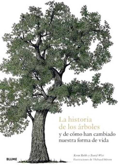 Papel Historia De Los Arboles Y De Como Han Cambiado Nuestra Forma