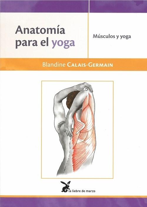 Papel Anatomia Para El Yoga