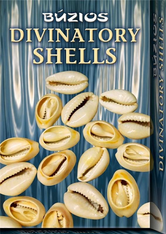 Papel Divinatory Shells Buzios ( Libro + Conchas )