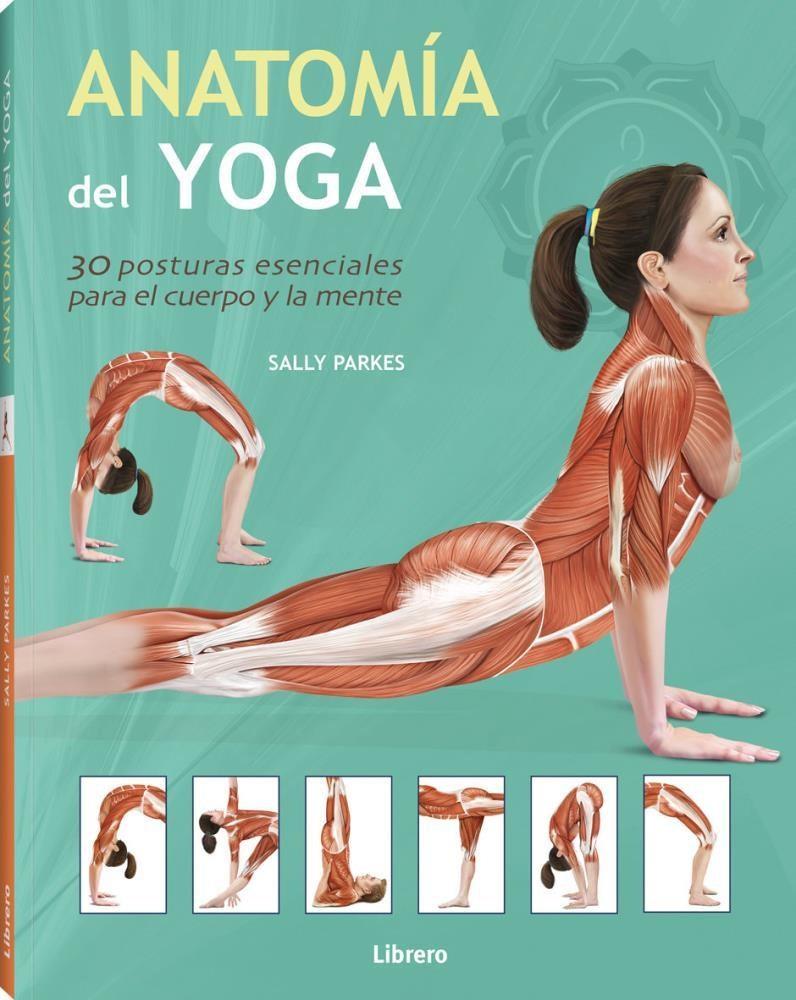 Papel Anatomia Del Yoga