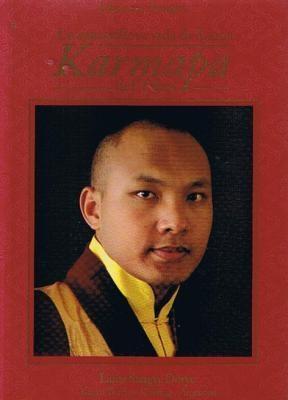 Papel Maravillosa Vida De Lama Karmapa Del Tibet, La