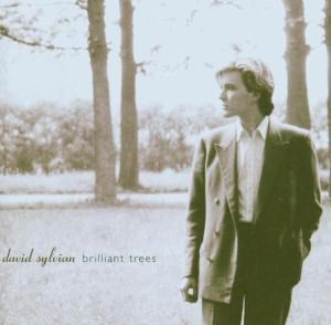 CD SYLVIAN DAVID/BRILLIANT TREES