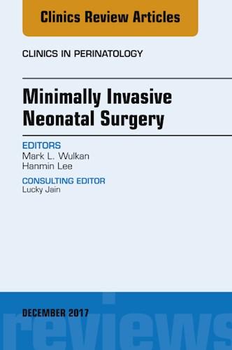 E-book Minimally Invasive Neonatal Surgery, An Issue of Clinics in Perinatology, E-Book