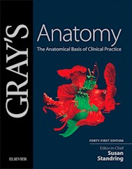 E-book Gray'S Anatomy E-Book