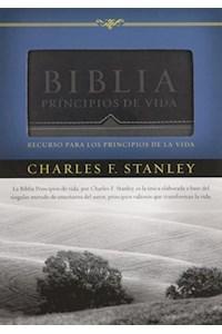 Papel Biblia Principios De Vida Piel Negra Gris