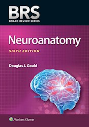 E-book Brs Neuroanatomy
