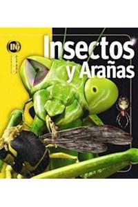 Papel Insiders - Insectos Y Arañas