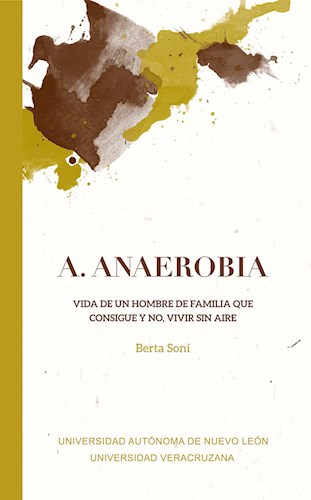 Papel A. Anaerobia