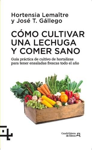 Papel Cómo Cultivar Una Lechuga Y Comer Sano
