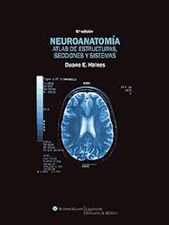 Papel Neuroanatomia