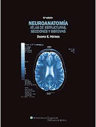 Papel Neuroanatomia
