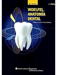 Papel Woelfel. Anatomia Dental