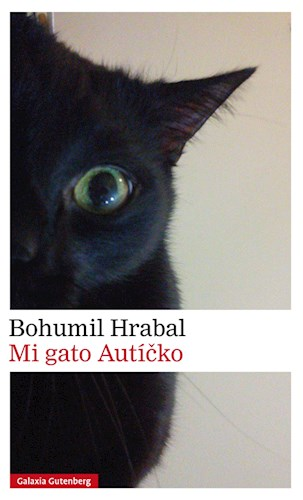 E-book Mi Gato Autícko