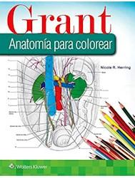 Papel Grant Anatomía Para Colorear