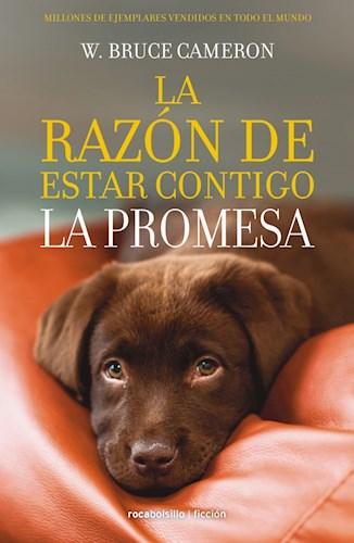 Papel RAZON DE ESTAR CONTIGO 3 LA PROMESA (COLECCION FICCION)
