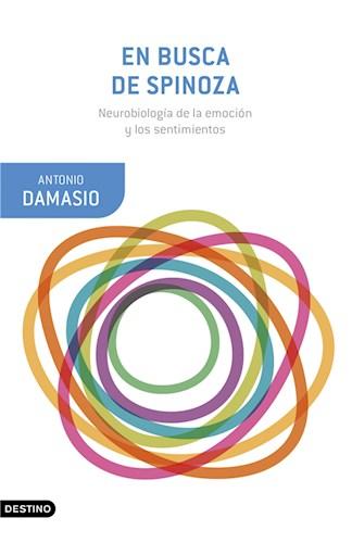 E-book En Busca De Spinoza