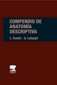 Papel Compendio de Anatomía Descriptiva Ed.22