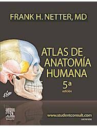 Papel Atlas De Anatomía Humana