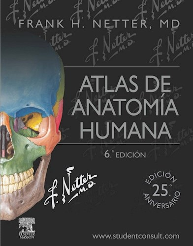 Netter  Atlas De Anatomía Humana Ed 6º