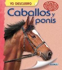 Papel Caballos Y Ponis