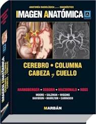 Papel Imagen Anatomica Cerebro, Columna Cabeza Y Cuello