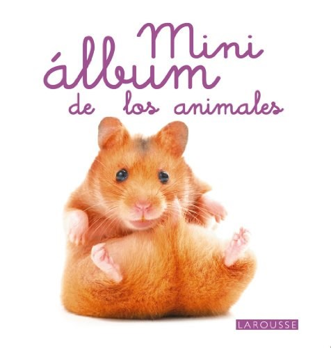 Papel Mini Albun De Los Animales