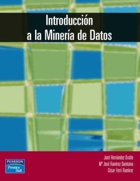 E-book Introducción A La Minería De Datos