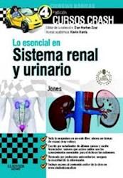 Papel Lo Esencial En Sistema Renal Y Urinario