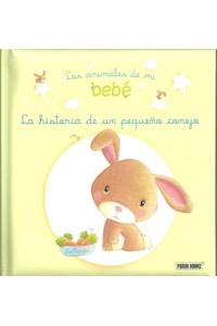 Papel La Historia De Un Pequeño Conejo