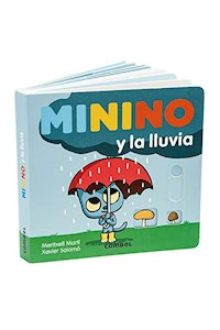 Papel Minino Y La Lluvia
