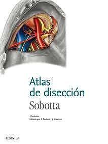 Papel Sobotta. Atlas de disección Ed.2
