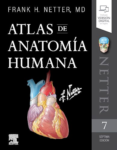 Papel Atlas de Anatomía Humana Netter Ed.7º