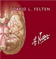 Papel Netter. Flashcards De Neurociencia Ed.3º