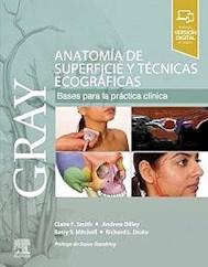 Papel Gray Anatomía De Superficie Y Técnicas Ecográficas.