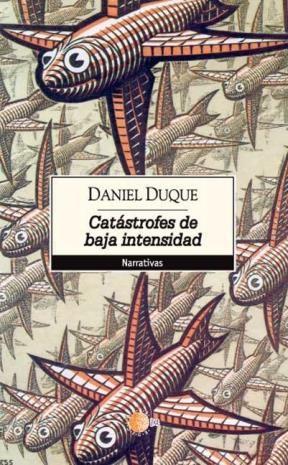 E-book Catástrofes De Baja Intensidad