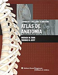 Papel Atlas De Anatomia