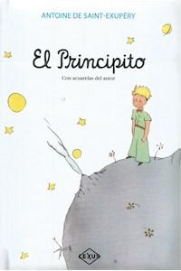 Papel El Principito Con Acuarelas Del Autor