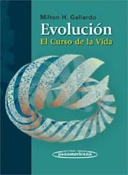 Papel Evolución. El Curso De La Vida