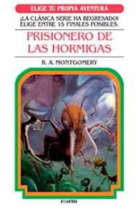 Papel Prisionero De Las Hormigas