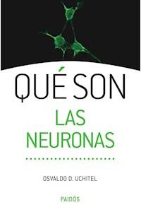 Papel Qué Son Las Neuronas