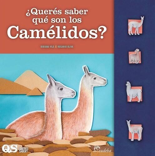 Papel ¿Querés saber qué son los camélidos?