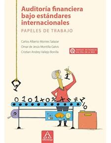 Papel Auditoría Financiera Bajo Estándares Internacionales Papeles De Trabajo
