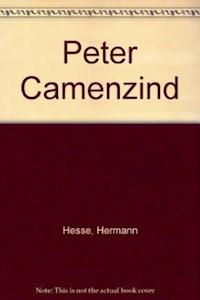 Papel Peter Camenzind