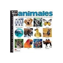 Papel Mi Gran Libro De Los Animales