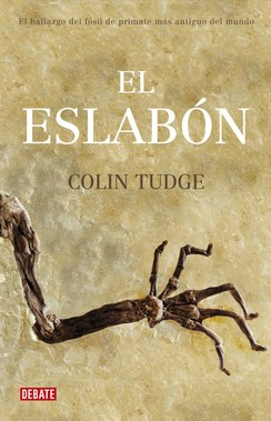 Papel Eslabon, El