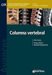 E-Book Avances En Diagnóstico Por Imágenes: Columna Vertebral E-Book