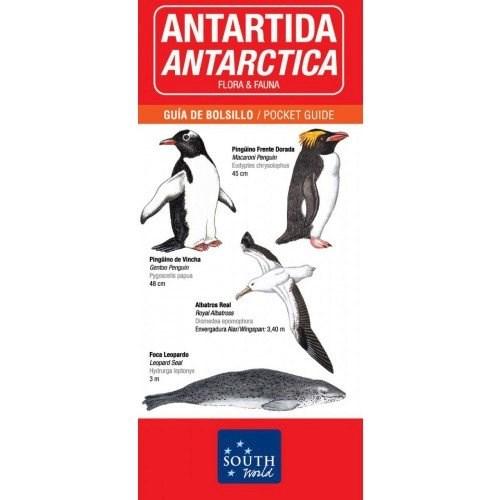 Papel Antartida - Flora & Fauna (Bilingue)